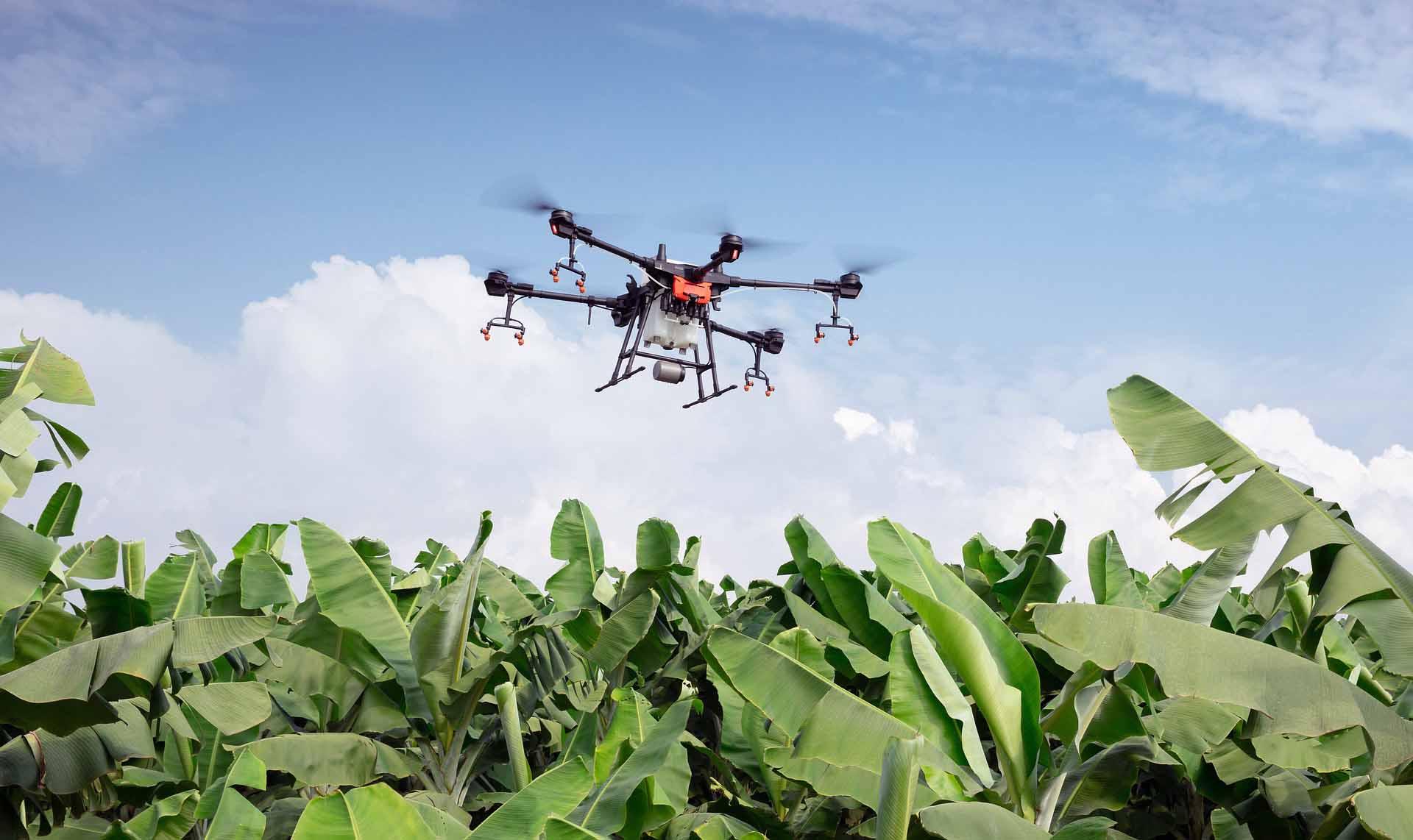 drones-fumigadores